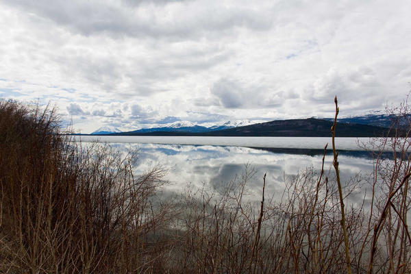 Cloud reflections on the Atlin Road